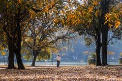 Ein Geschäftsmann, der Ihr Mobiltelefon im Park verwendet lizenzfreie stockbilder