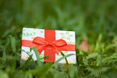 Ein Geschenk lizenzfreie stockfotografie