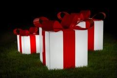 Ein Geschenk für Sie stockbild