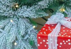 Ein Geschenk im roten Verpacken auf dem Hintergrund eines schneebedeckten Weihnachtsbaums lizenzfreie stockfotografie