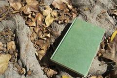 Ein geschlossenes Buch im Herbst Stockbild