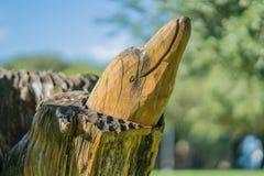 Ein geschnitzter Delphin-Kopf schmückt einen Park Stockbild
