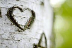 Ein geschnitztes Liebes-Inneres Stockbild