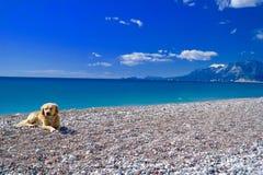 Ein gewöhnlicher Tag für Antalya Stockbild