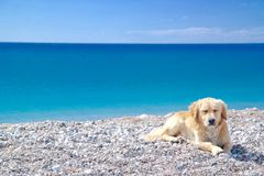 Ein gewöhnlicher Tag für Antalya Lizenzfreies Stockfoto