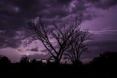 Ein Gewitter silhouettiert die Bäume auf einer Kansas-Sommernacht Stockbild