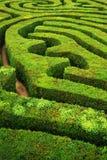 Ein gewundenes verwirrendes Heckenspiralenlabyrinth Stockbilder