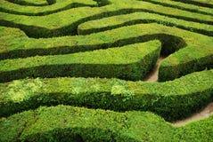 Ein gewundenes verwirrendes Heckenspiralenlabyrinth Stockfotografie