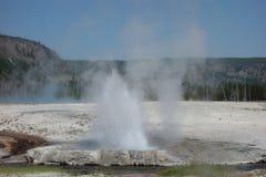Ein Geysir, der an Yellowstone-Park ausbricht Lizenzfreies Stockfoto