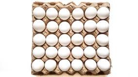 Ein Gitter von Eiern von dreißig Stücken Stockfotos