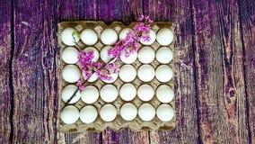 Ein Gitter von Eiern von dreißig Stücken Lizenzfreie Stockfotografie