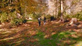 Ein glückliches junges Paar in der Liebe, die durch einen Wald mit Herbstlaub läuft stock video