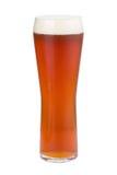 Ein Glas Auffrischung des hellen Bieres Goldenes Bier mit Schaumgummi lizenzfreies stockbild