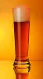 Ein Glas Bier Lizenzfreie Stockfotografie
