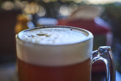 Ein Glas des besten Bieres, des Funkelns und der Kälte Stockfotos