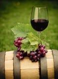 Ein Glas des weißen Weins und der Traube Lizenzfreie Stockfotos