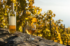Ein Glas des Weißweins und der geöffneten Flasche auf dem Weinberghintergrund im Herbst Lavaux, die Schweiz Lizenzfreies Stockbild