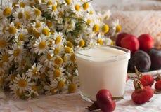 Ein Glas Jogurt, ein Blumenstrauß der Kamille und eine Platte von reifen Pflaumen auf einer hellen Spitzeoberfläche verziert mit  Stockfoto