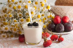 Ein Glas Jogurt, ein Blumenstrauß der Kamille und eine Platte von reifen Pflaumen auf einer hellen Spitzeoberfläche verziert mit  Lizenzfreie Stockfotografie