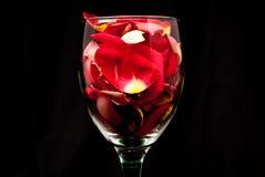 Ein Glas Liebe und Leben Lizenzfreie Stockfotos