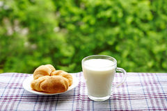 Ein Glas Milch Lizenzfreies Stockbild