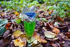 Ein Glas mit einem grünen Getränk und eine Flasche Parfüm auf trockenen gefallenen Blättern stockfotografie