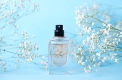 Ein Glas Parfüm auf einem blauen Hintergrund mit Gypsophila lizenzfreie stockbilder