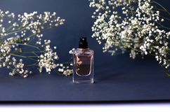 Ein Glas Parfüm auf einem schwarzen Hintergrund mit Gypsophila stockfoto