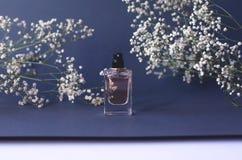 Ein Glas Parf?m auf einem schwarzen Hintergrund mit Gypsophila lizenzfreie stockfotografie