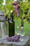 Ein Glas weißer Wein Eine Flasche Wein Vinnic Reifer Traubenwein Dunkelrote Trauben Weinberg In den Flanken gibt es einen Kognak stockfotos