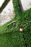 Ein Goldverschluß auf einem alten grünen Gras verzierte Auto Stockfotos