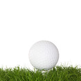 Ein Golfball im Gras Lizenzfreies Stockbild