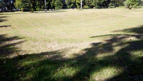 Ein Golfplatz oder eine Feldsommerlandschaft lizenzfreie stockfotos