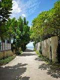 Ein Grünbaum und -weinberg in Thailand Wunderbares langes Wochenende mit Familie lizenzfreie stockfotos