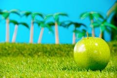 Ein grüner Apfel im Gras Stockfoto