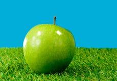 Ein grüner Apfel im Gras Lizenzfreie Stockfotos