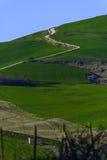 Ein grüner Hügel mit Serpentinenstraße Stockfoto