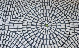 Ein grünes Blatt im Kreisziegelsteinmuster lizenzfreies stockfoto
