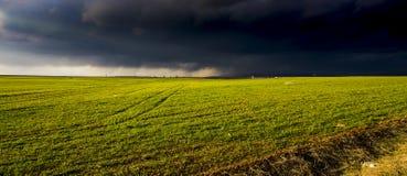 Ein grünes Feld, das unter bewölkten bewölkten Himmel legt stockfotografie