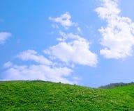 Ein grünes Feld mit blauem Himmel und Wolken Lizenzfreie Stockbilder
