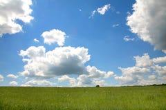 Ein grünes Feld mit blauem Himmel und Wolken Lizenzfreie Stockfotos