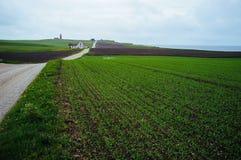 Ein grünes Feld mit einem Weg zu einem Landhaus und zu einem Leuchtturm stockbild