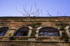 Ein großer Altbau, von dem Bäume wachsen Ein altes Gebäude mit Fenstern, auf denen Gitter sind stockfotografie