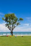 Ein großer Baum unter den kleinen bunten Bällen auf dem Morgen Lizenzfreies Stockfoto