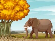 Ein großer brauner Elefant nahe dem großen Baum stock abbildung