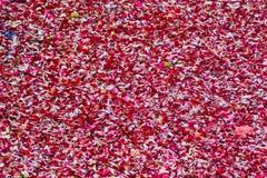 Ein großer Stapel von roten Rosen Lizenzfreie Stockfotografie
