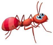 Ein großes Ameisenkriechen stock abbildung