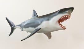 Ein großes weißer Haifisch-Baumuster gegen Weiß Stockfotografie