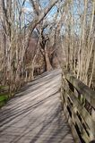 Ein hölzerner Fußweg im Wald im Frühjahr Lizenzfreie Stockfotografie