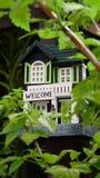 Ein hölzernes grünes und weißes Vogelhaus mit etwas Himbeere verlässt in der Front Stockfotos